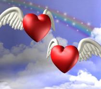 2017.12.14 Başmeleklerle Koşulsuz Sevgi Çalışması