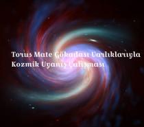 Ücretli Uzaktan Torus Mate Gökadası Varlıklarıyla Kozmik Uyanış Çalışması