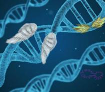 Galaktik DNAmız