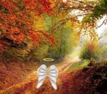 23 Eylül 2018 Sonbahar Ekinoksu Başmelek Cebrail'in Mesajı