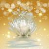 Kundalini Reiki ile Ruhsal Olgunlaşma Çalışması