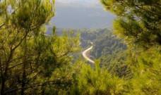 Kaz Dağları İçin Şefkat ve Merhamet Şifası