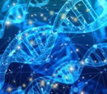 DNA Aktivasyonları ve Yaşam Frekansı